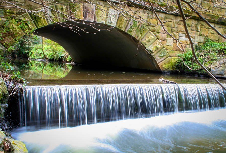 Crawfordsburn Country Park River 1