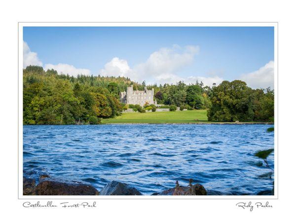 Castlewellan Forest Park by Ricky Parker Photography