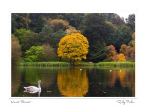 Mount Stewart by Ricky Parker Photography