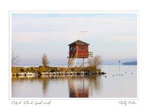Oxford Island Lough Neagh by Ricky Parker Photography