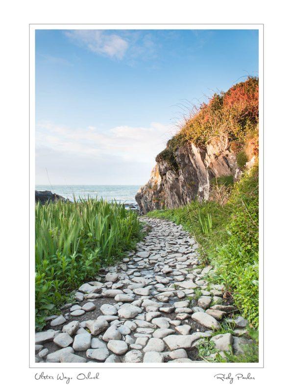 Ulster Way Orlock by Ricky Parker Photography